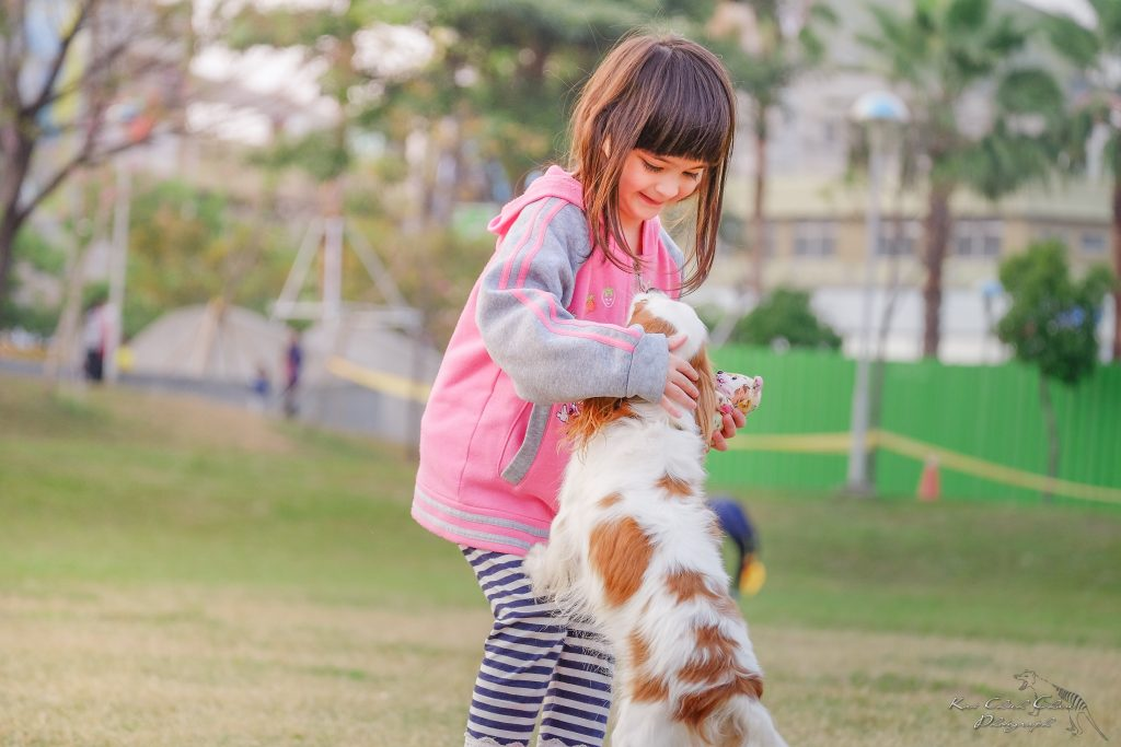 Girl petting a dog jumping on her